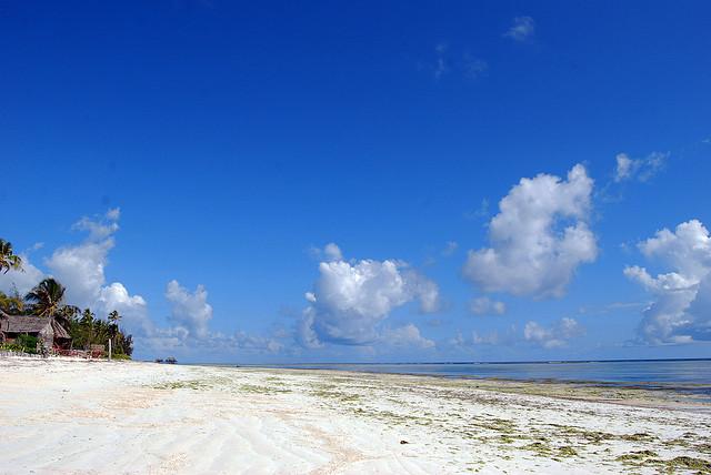 Plaża Tanzania Zanzibar